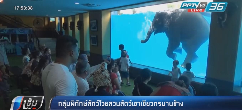 """กลุ่มพิทักษ์สัตว์โวย """"สวนสัตว์เขาเขียว""""ทรมานช้าง"""