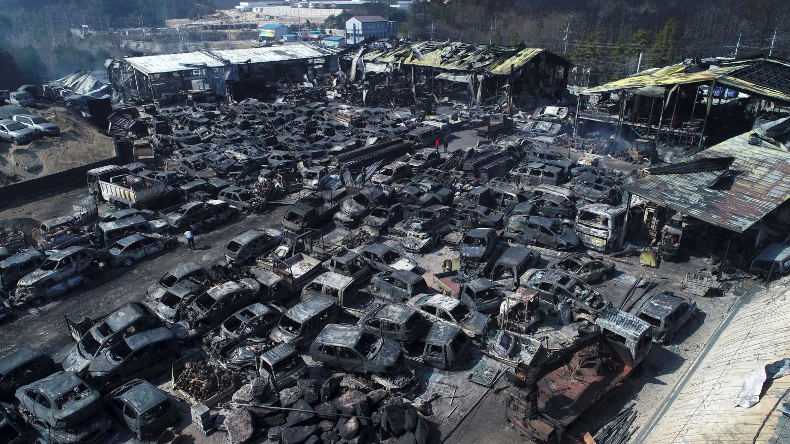 เกาหลีใต้ ประกาศสถานการณ์ภัยพิบัติแห่งชาติ รับมือไฟป่าครั้งใหญ่