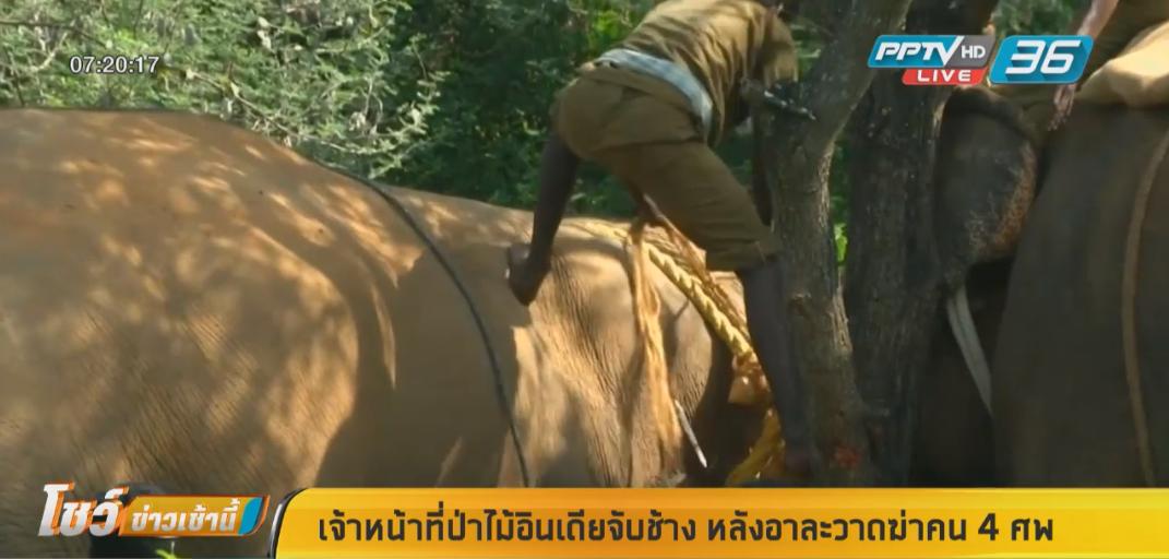 เจ้าหน้าที่ป่าไม้อินเดียจับช้าง หลังอาละวาดฆ่าคน 4 ศพ