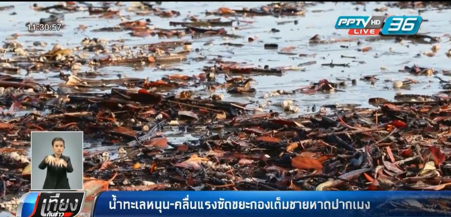 สุราษฎร์ฯ ปริมาณฝนลด-แม่น้ำตาปีระดับน้ำทรงตัว