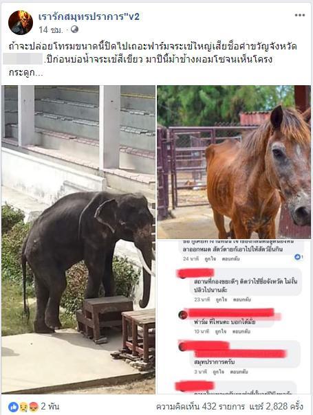 """เผยภาพ """"ช้าง-ม้า"""" ที่เลี้ยงไว้ในฟาร์มจระเข้ผอมโซ  ชาวเน็ตวิจารณ์ขรม"""