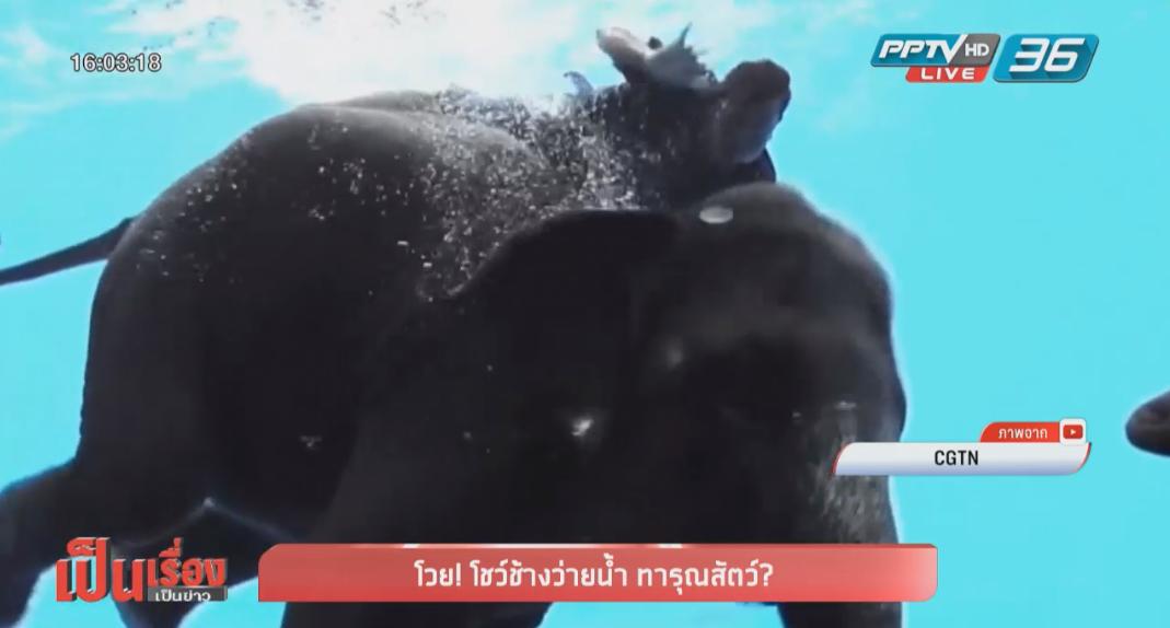 นักอนุรักษ์ช้างไทย ยันช้างไม่ใช่ปลาไม่ควรให้ดำน้ำเกินธรรมชาติ