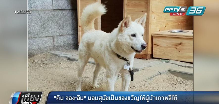 """""""คิม จอง-อึน"""" มอบสุนัขเป็นของขวัญให้ผู้นำเกาหลีใต้"""
