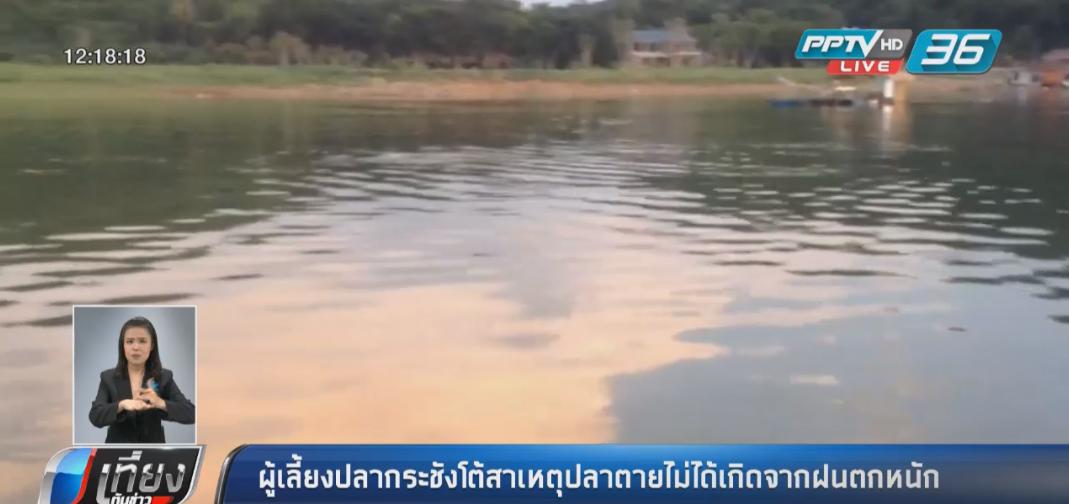 ผู้เลี้ยงปลากระชังโต้สาเหตุปลาตายไม่ได้เกิดจากฝนตกหนัก