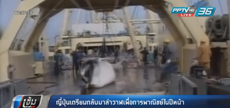 ญี่ปุ่นเตรียมกลับมาล่าวาฬเพื่อการพาณิชย์ในปีหน้า