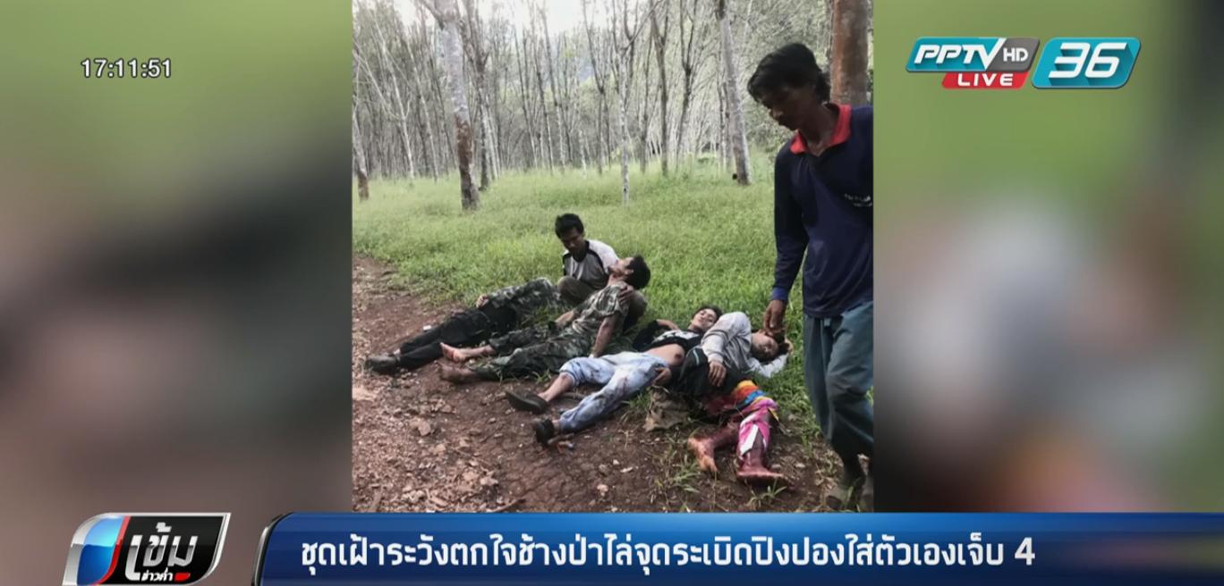 ชุดเฝ้าระวังฯทองผาภูมิ ตกใจช้างป่าวิ่งไล่ จุดระเบิดปิงปองพลาด บาดเจ็บ 4 คน