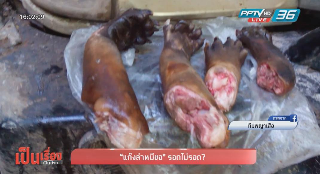 """สมาคมพิทักษ์สัตว์ไทย กังวลข้าราชการเอื้อประโยชน์กันเอง """"คดีซากหมีขอ"""""""