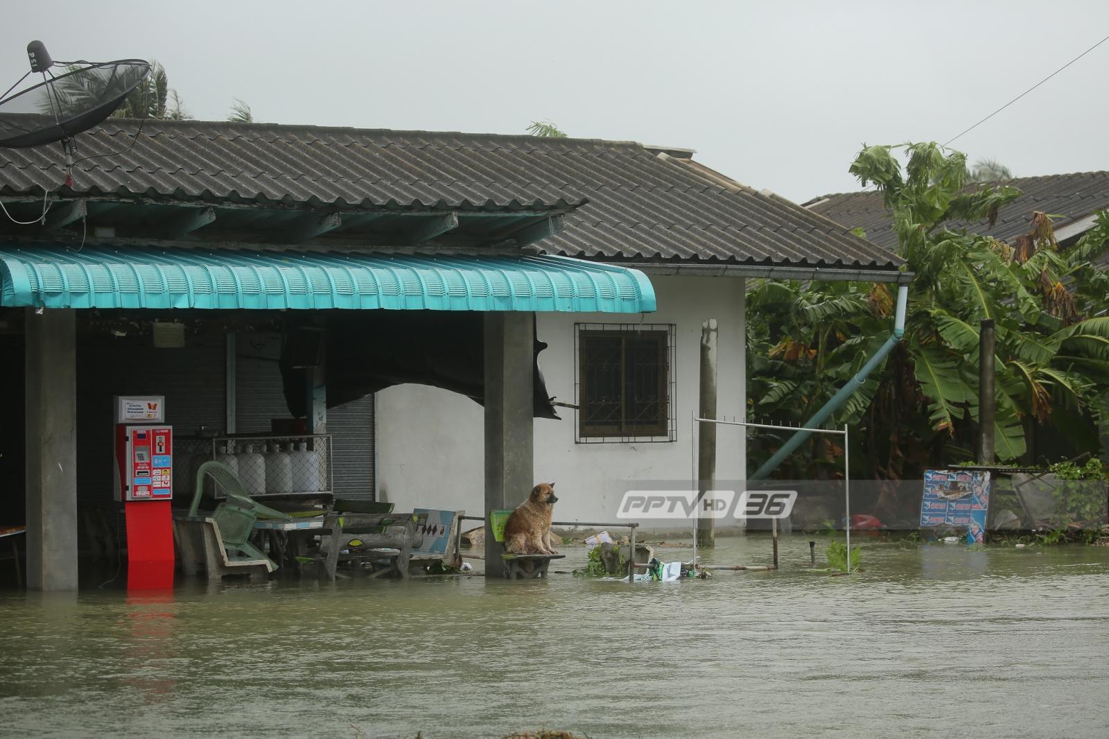 """3 แบงก์ """"ลดดอกเบี้ย-พักหนี้-ซ่อมบ้าน"""" ช่วยผู้ประสบภัยพายุปาบึก"""