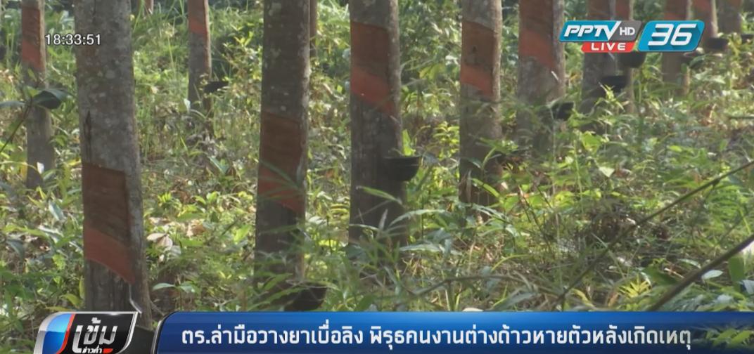 ตร.ล่ามือวางยาเบื่อลิง พิรุธคนงานต่างด้าวหายตัวหลังเกิดเหตุ