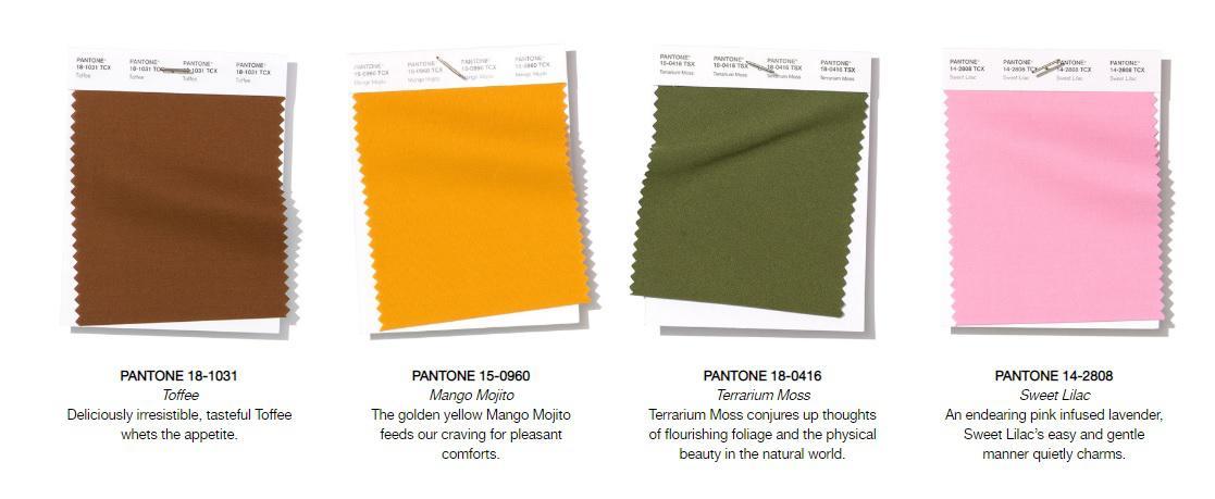 """""""โทนส้มพีช"""" เทรนด์สีโลก กับอีก 7 สีที่มาแรงจาก TCDC"""