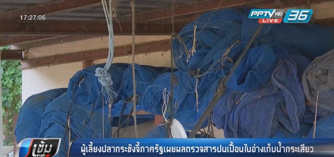 ผู้เลี้ยงปลากระชังจี้ภาครัฐเผยผลตรวจสารปนเปื้อนในอ่างเก็บน้ำกระเสียว