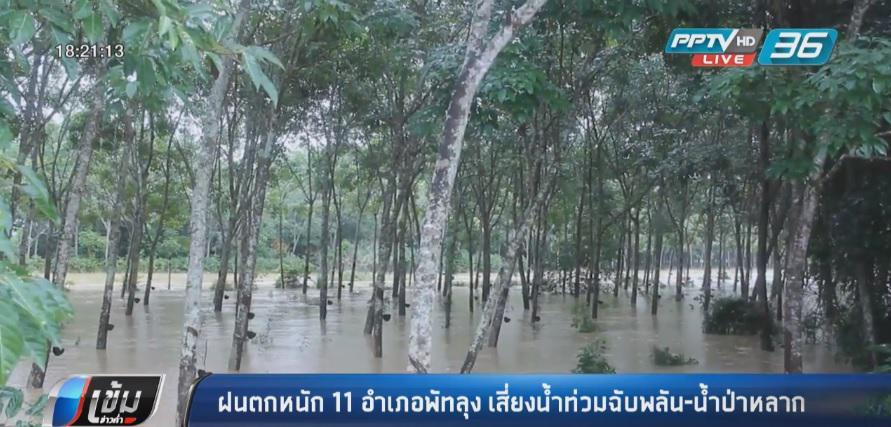 ฝนตกหนัก 11 อำเภอพัทลุง เสี่ยงน้ำท่วมฉับพลัน-น้ำป่าหลาก